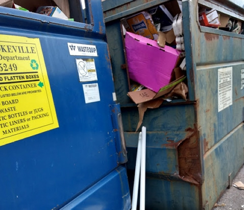 Two full recycling bins